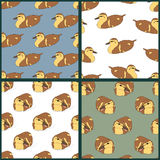 Set of four seamless patterns with cute ducklings Royalty Free Stock Images
