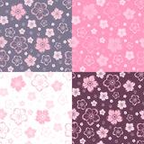 Set of four seamless patterns with flowers. Vector Stock Photography