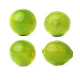Set of four single limes in different compositions and foreshortenings, isolated over the white background Stock Images