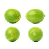 Set of four single limes in different compositions and foreshortenings, isolated over the white background Royalty Free Stock Photo