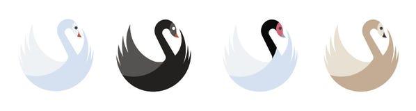 Set of four swans. Blue, white, blackhead, black and gray stock illustration