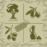 Set of four symbols for olive labels. Set of four symbols on the theme of olives and oil Stock Images