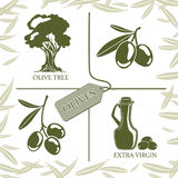 Set of four symbols for olive labels Stock Images