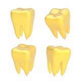Set of four teeth isolated Stock Photo