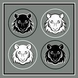 Set of four tiger heads emblems Stock Image