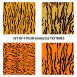 Set of four tiger seamless textures Royalty Free Stock Photos