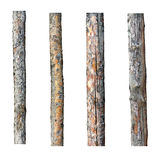 Set of four timber isolated on white background Royalty Free Stock Image