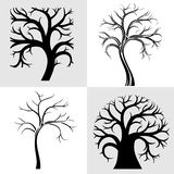 Set of four trees Royalty Free Stock Image