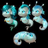 Set of four unusual aliens fish with blue eyes Royalty Free Stock Images