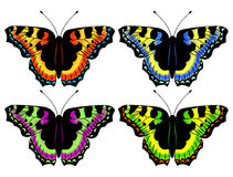 Set from four vector butterflies. Stock Image
