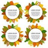 Set of four vector card with yellow leaves isolated on white background Stock Photo