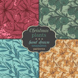 Set of four Vector seamless patterns with hand drawn winter plan. Ts - poinsettia, mistletoe, fir-cone; holly.Christmas and New Year sketch background. Can be Stock Photo