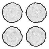 Set of four vector tree rings background and saw cut tree trunk Stock Photo