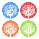 Set of four white trees with leaves on colorful round background. Vector illustration Royalty Free Stock Photos