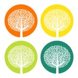 Set of four white trees with leaves on colorful round background. Vector illustration Stock Images