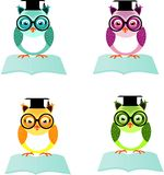 Set of four wise owls. Set of four different colored owls sitting on open book Royalty Free Stock Image