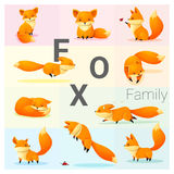 Set Fox rodzina Obrazy Royalty Free