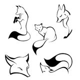 Set of foxes in curve lines Stock Image