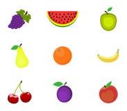 Set Früchte Lizenzfreie Stockfotos