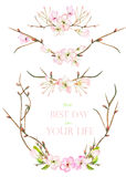 A set with the frame borders, floral decorative ornaments with the watercolor blooming flowers, leaves and branches with the buds Stock Images