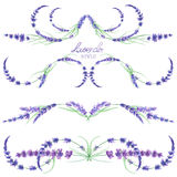 A set with the frame borders, floral decorative ornaments with the watercolor lavender flowers for a wedding or other decoration Royalty Free Stock Photos