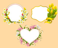 Set of frame with flowers Stock Images