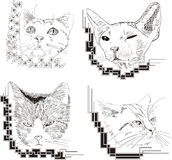 Set of framed cat sketches Royalty Free Stock Photo