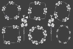Set of frames.lily. graceful frames.vector illustration Stock Images