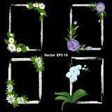 A set of frames for photos. decorated with flowers - orchid, Passiflora, Eustoma and Chamomile royalty free illustration