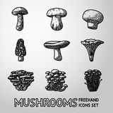 Set of freehand mushroom icons - porcini Stock Images