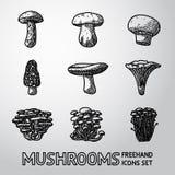Set of freehand mushroom icons - porcini Stock Images