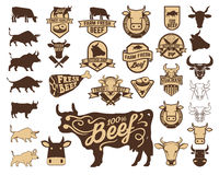 Set of the fresh beef logo. Cow icons. Butchery labels. Design elements for logo, label, emblem, sign Stock Photography