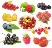 Set of Fresh Berries Stock Image