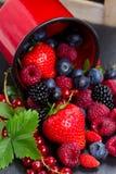 Set of  fresh berries Royalty Free Stock Photo
