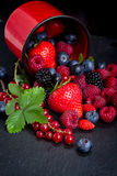 Set of  fresh berries Royalty Free Stock Photography