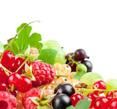 set fresh berries with green leaf Stock Images