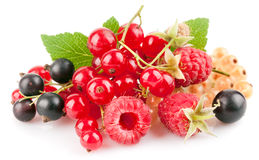 Set fresh berries with green leaf Stock Photography