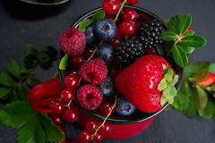 Set of  fresh berries Royalty Free Stock Image