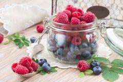 Set of  fresh berries Stock Photos