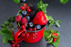 Set of  fresh berries Royalty Free Stock Photos