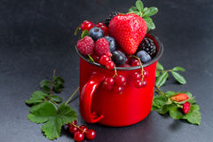 Set of fresh berries. Red mug with fresh berries on black stone background, low key royalty free stock photo