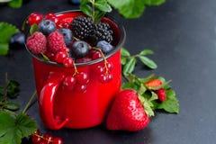 Set of  fresh berries Stock Photography