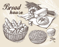 Set of fresh bread in Basket and ear royalty free illustration