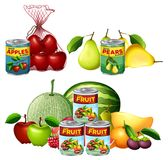 A Set of Fresh and Canned Fruits. Illustration stock illustration