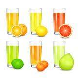 Set of fresh citrus juices. Stock Photo
