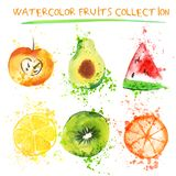 Set of Fresh fruit watercolor objects. Watercolored apple, citruses, avocado and qiwi in one art collection with. Splashes. Healthy lifestyle set with fruits Royalty Free Stock Images