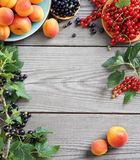 Set of  fresh fruits, berries and branches with currant  on wooden table. Stock Photography