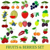 A set of fresh fruits and berries illustrations on a white background. vector illustration