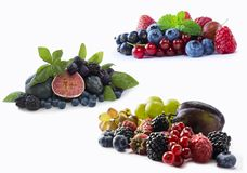 Set of fresh fruits and berries. Ripe blueberries, blackberries, red currants, grapes, raspberries, figs and plums. Various fresh. Summer berries on white Royalty Free Stock Photos