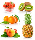 Set fresh fruits with green leaves Stock Image